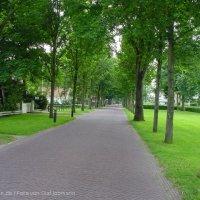 Schiermonnikoog 2003_80