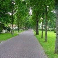Schiermonnikoog 2003_81