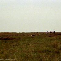 Schiermonnikoog 2004_16