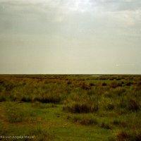 Schiermonnikoog 2004_17