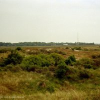 Schiermonnikoog 2004_6