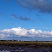 Schiermonnikoog 2011_23