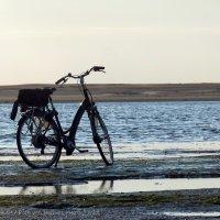 Schiermonnikoog 2011_28