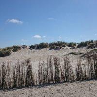 Schiermonnikoog 2015_27