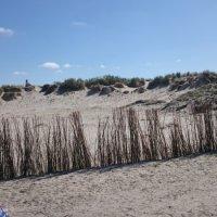 Schiermonnikoog 2015_28