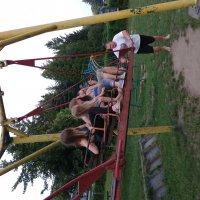 Sommercamp 2016_13